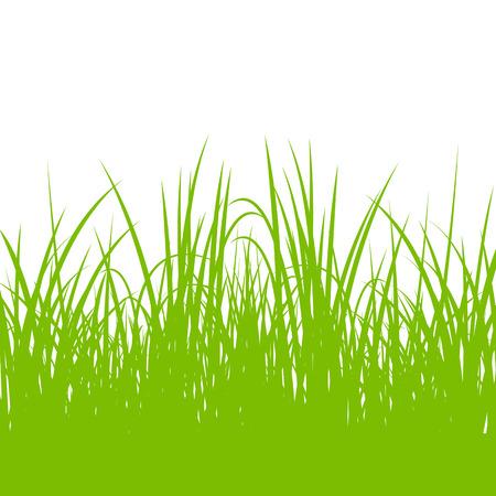 untamed: C�sped, plantas salvajes detallada siluetas ilustraci�n vectorial de fondo para el cartel