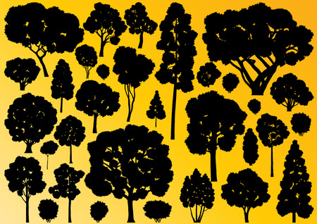 big tree: Forest trees silhouettes illustration collection background vector Illustration