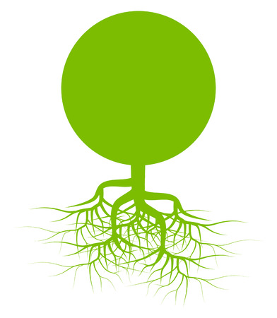 Green tree with roots background vector for poster Vector