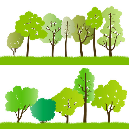 cypress tree: Forest trees silhouettes illustration collection background vector for poster