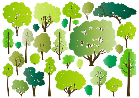 oak tree silhouette: Forest trees silhouettes illustration collection background vector for poster