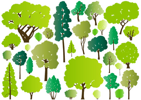 huge tree: Forest trees silhouettes illustration collection background vector for poster