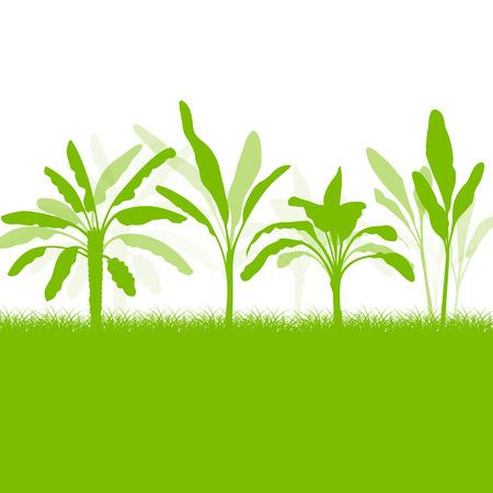 Bananenboom, organische ecologie achtergrond voor poster Stock Illustratie