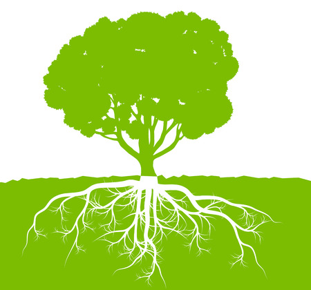 plant tree: Tree with roots background ecology vector concept for poster
