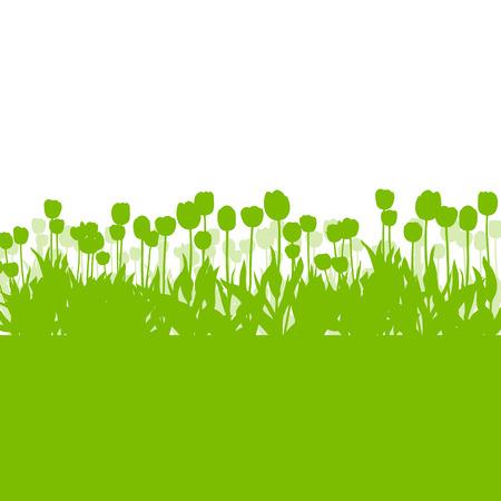 green leaves border: Tulips spring seasonal flower garden ecology concept detailed illustration background vector Illustration
