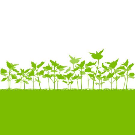 Brandnetel veld vector achtergrond ecologie groen concept voor poster