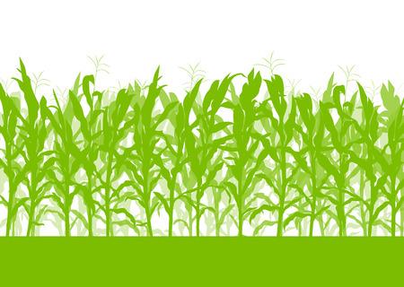 Mais-Feld-Vektor-Hintergrund Ökologie grüne Konzept für Plakat Vektorgrafik