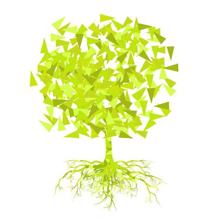 raices de plantas: Verano abstracto del vector del �rbol del concepto del fondo Vectores