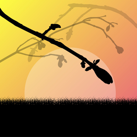 grass field: Tree branch with buds spring vector background landscape with grass field