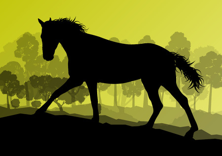 freedom nature: Wild horse in nature vector background landscape freedom concept for poster Illustration