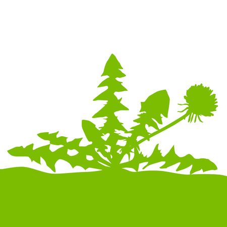 snort: Dandelion green ecology concept field landscape background vector Illustration