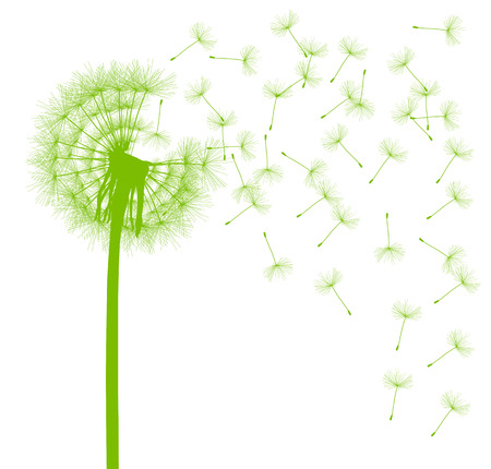 passing: Dandelion seeds blowing away green ecology and time passing concept background vector