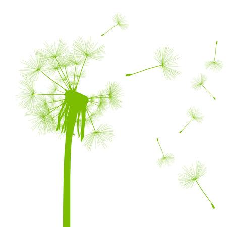 Paardebloemzaden wegblazen groene ecologie en tijd passeren concept achtergrond vector