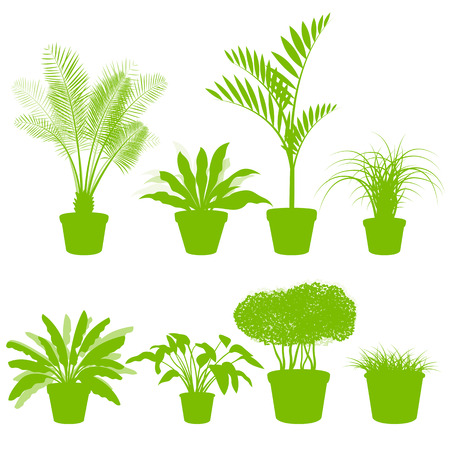House indoor plants in pots set vector background green concept for poster
