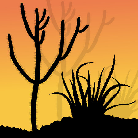 thorn bush: Cactus silhouettes landscape desert vector background concept for poster