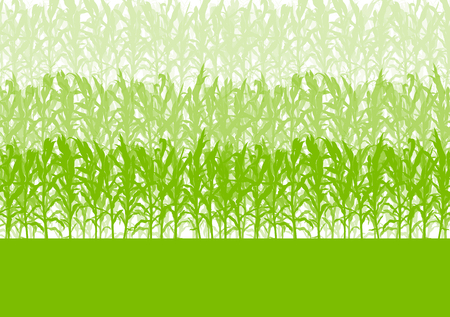 Corn field abstract rural autumn biomass biofuel vector background Illustration