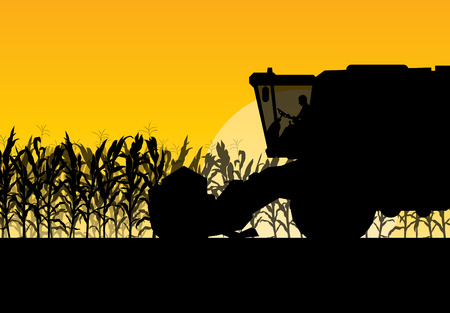 Corn field harvesting with combine harvester yellow abstract rural autumn vector background Stock fotó - 51073692