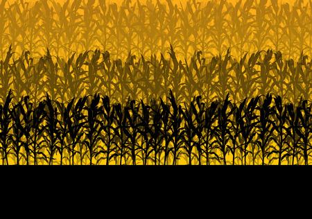 biomasa: Campo de maíz resumen otoño rural biomasa biocombustible de vectores de fondo