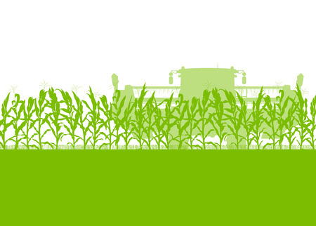 wheeled tractor: Corn field harvesting with combine harvester green ecology organic food abstract rural autumn Illustration