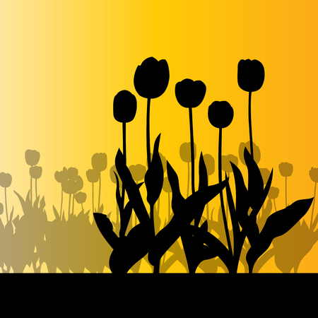 tulips field: Tulips field vector background orange abstract concept illustration Illustration