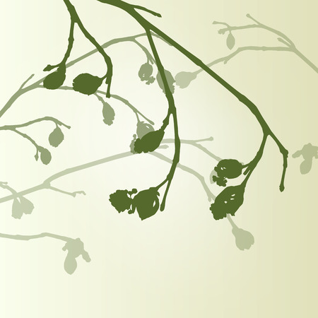 Twigs: Branch green buds ecology environmental spring vintage background vector illustration new start concept