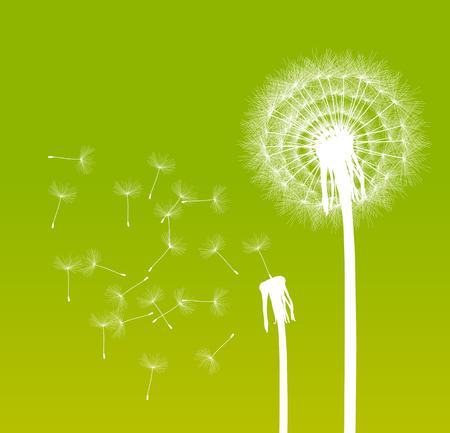 decode: Abstract dandelion background vector illustration springtime concept