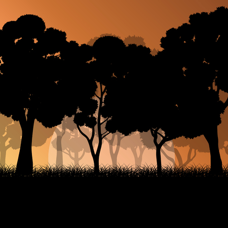 forest trees: Forest trees landscape sunrise vector background illustration mystery concept