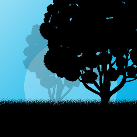 mystery: Forest trees landscape sunrise vector background illustration mystery concept