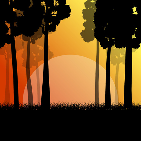 trailway: Forest trees landscape sunrise vector background illustration mystery concept