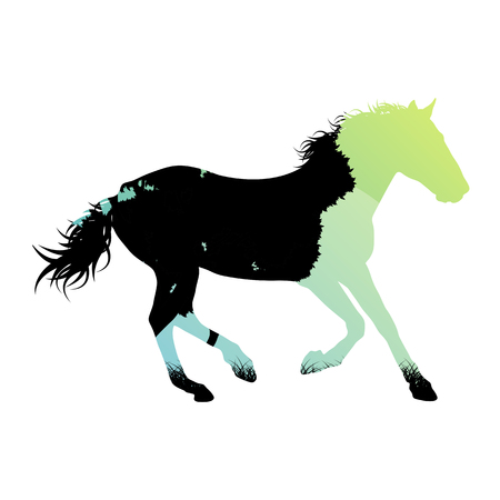 trotter: Wild horse silhouette made of abstract background forest landscape all isolated on white Illustration