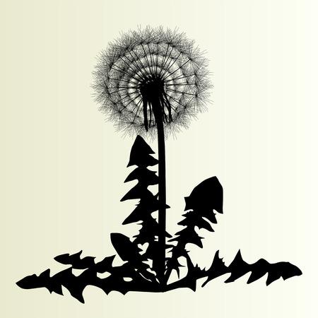 snort: Abstract dandelion background vector illustration springtime concept