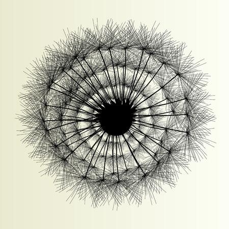 dandelion abstract: Abstract dandelion background vector Illustration spring concept Illustration