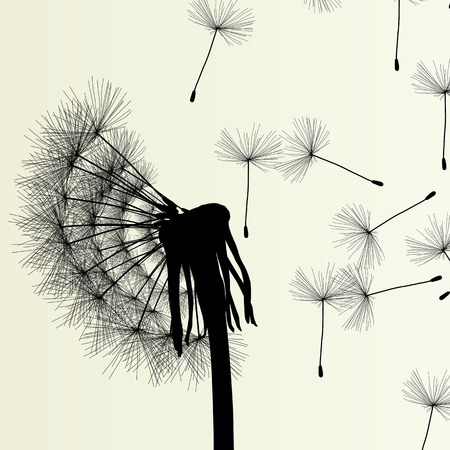 pollination: Abstract dandelion background vector Illustration spring concept Illustration