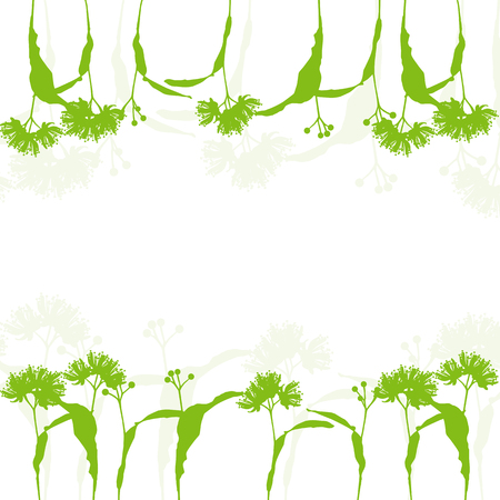 linden: Linden flowers ecology background vector abstract illustration Illustration