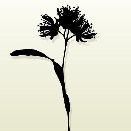 linden: Linden flowers vintage background vector abstract illustration Illustration