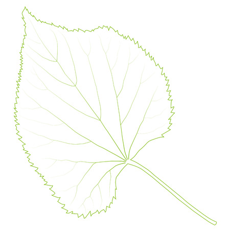 environmentally: Green leaf ecology background vector environmentally friendly illustration