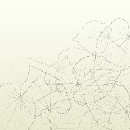 veins: Leaves transparent background vintage illustration abstract vector with outlines and leaf veins structure