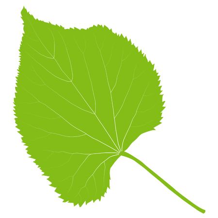 Green leaf ecology background vector environmentally friendly illustration