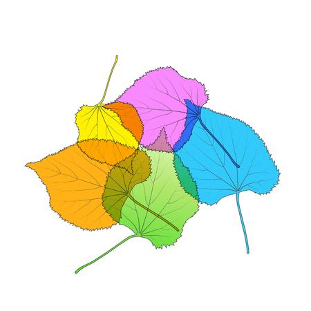 arboles frondosos: Deja el fondo moderno del vector tarjeta de ilustración abstracta colorida del otoño con el espacio blanco de la copia