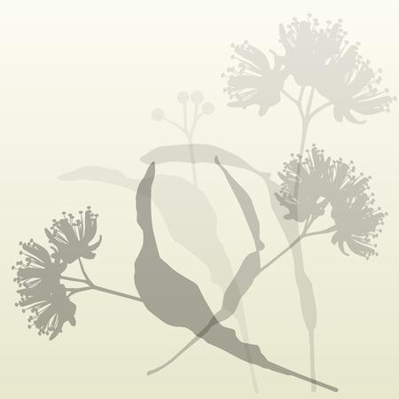 Las flores de tila fondo de la vendimia del vector ilustración abstracta