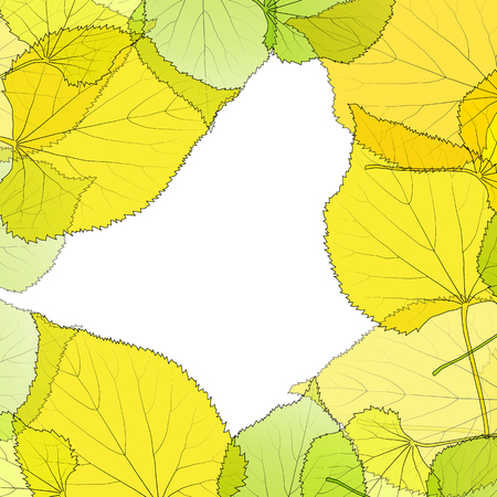linden tree: Leaves autumn background vector abstract illustration card with white copy space Illustration