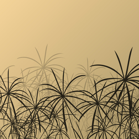 aquatic herb: Paper reed detailed silhouettes in nature background vector