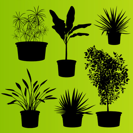 plant stand: House plants in flower pots set isolated vector background Illustration
