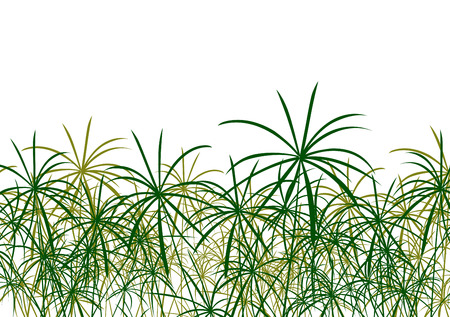 river bank: Paper reed detailed silhouettes in nature background vector