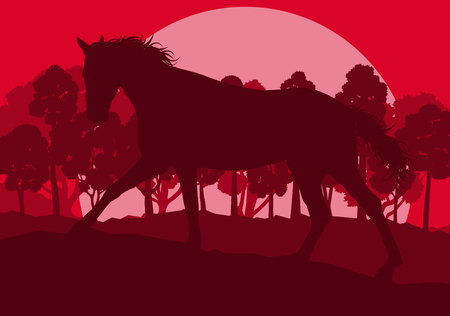red sunset: Graphic concept of a red wild forest trees landscape with sunset vector background Illustration