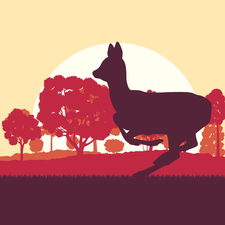 Roe deer in forest field with sunset and trees vector background Illustration