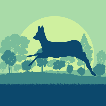 Roe deer in forest field with sunset and trees vector background Stock Vector - 85242579