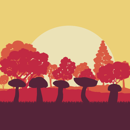 Mushroom forest field landscape vector background with sunset and trees