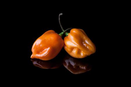 habanero: Two yellow hot habanero peppers on black background with reflection