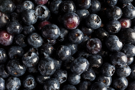 directly: Blueberries directly from above